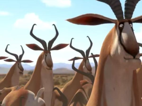 Exclusive-KHUMBA-clip-#2--Springboks!